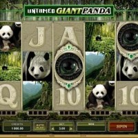 untamed giantpanda pokies 200x200 Untamed Giant Panda