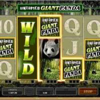 Untamed Giant Panda Pokies